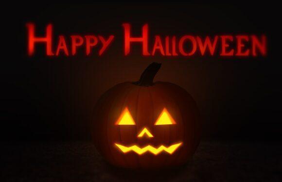 Projeto mães no Canadá: O Halloween está chegando. Veja como curtir com seus filhos uma das datas mais esperadas do ano.