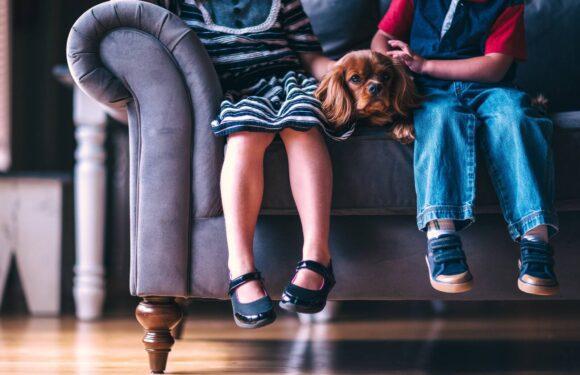 Mães no Canadá: Organização da casa com filhos pequenos